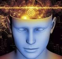 Foto mostrando cérebro
